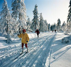 Harz - Langlauf