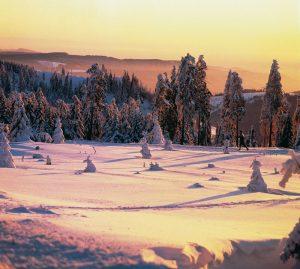 Harz - Winteridylle
